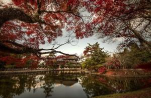 Temple Tōdai-ji Nara